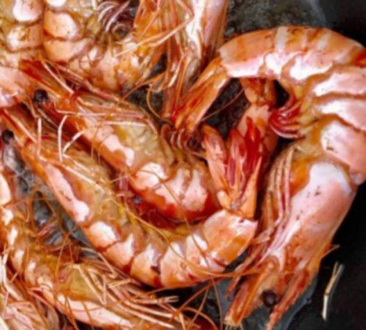 không ăn sống tôm biển