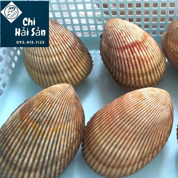 Soduong tại Chihaisan