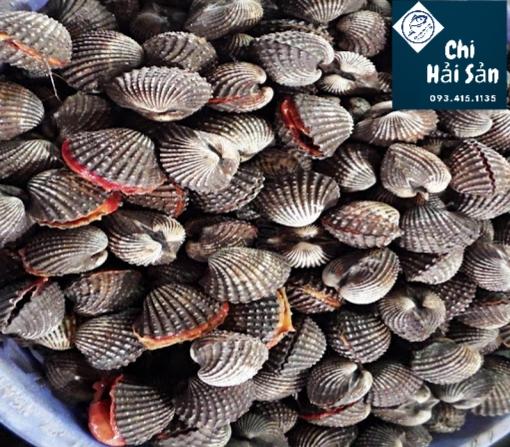 Giá tốt tại Chihaisan