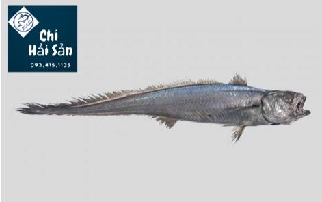 Cá hoki