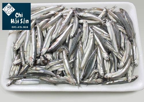 Giá sỉ cá cơm TPHCM