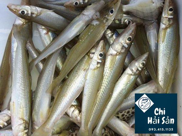Cá bán tại Chihaisan