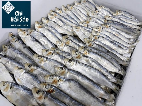 Cá trích xuất khẩu giá sỉ tại Chihaisan