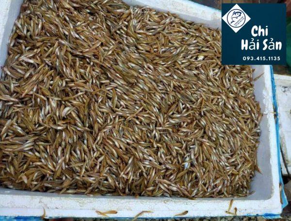 Giá cá bống trứng tạivựa hải sản