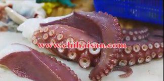 Bạch Tuộc Nhật (Chuẩn Sashimi)