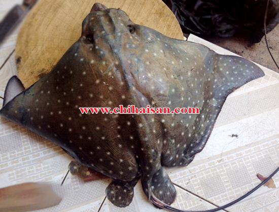 Khô cá đuối ó