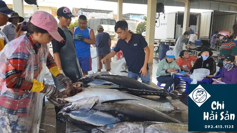 cá ngừ đại dương - giá hải sản tươi sống