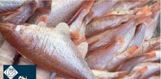 Khô cá hồng phèn