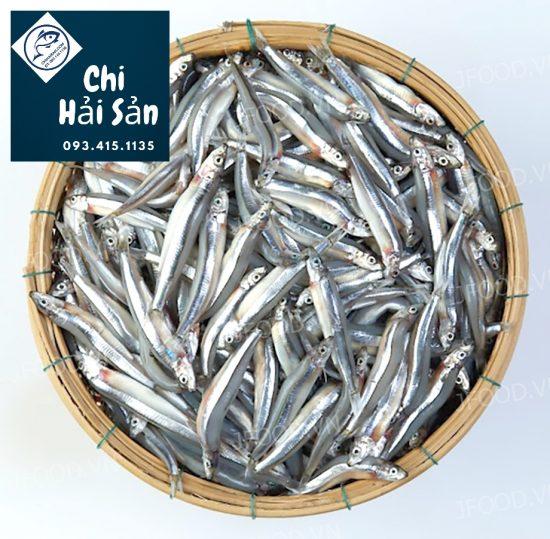Hình ảnh cá cơm