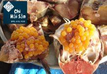 Trứng cá giàu dinh dưỡng