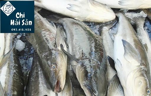 Cá bớp nguyên con tại Chihaisan