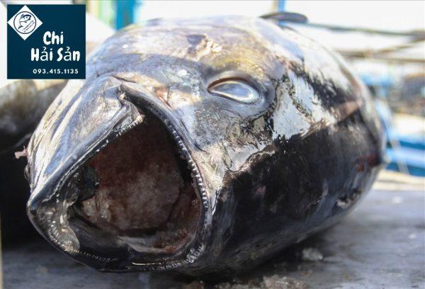 Đầu cá rất tươi tại Chihaisan