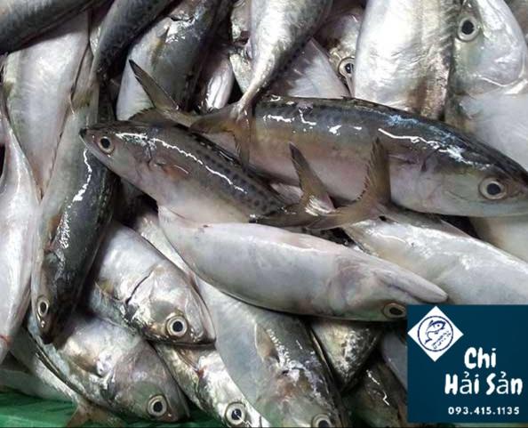 cá bạc má tại vựa hải sản quận 1- 3- 5 -7 nội thành TPHCM