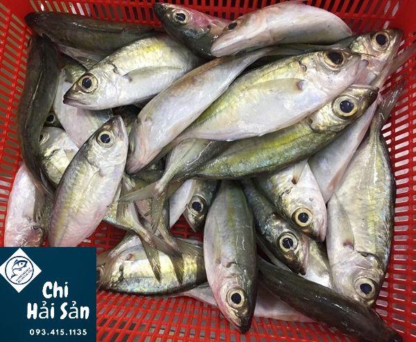 cá tráo tươi roi rói tại vựa Chi hải sản
