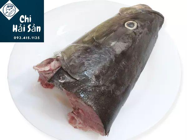 Đầu cá bớp